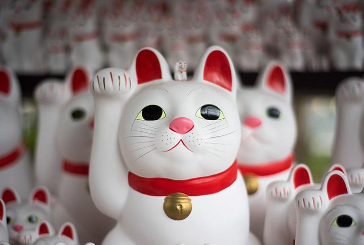 Chinese fortune cat, 招财猫, zhāo cái māo